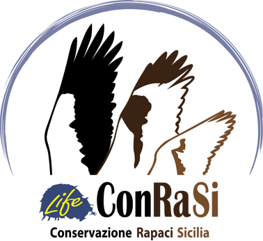 Progetto LIFE ConRaSI → Tutela dei rapaci in Sicilia