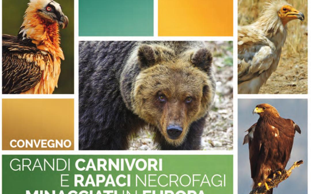 Convegno su grandi carnivori e rapaci necrofagi, 13-15 Ottobre, Teramo