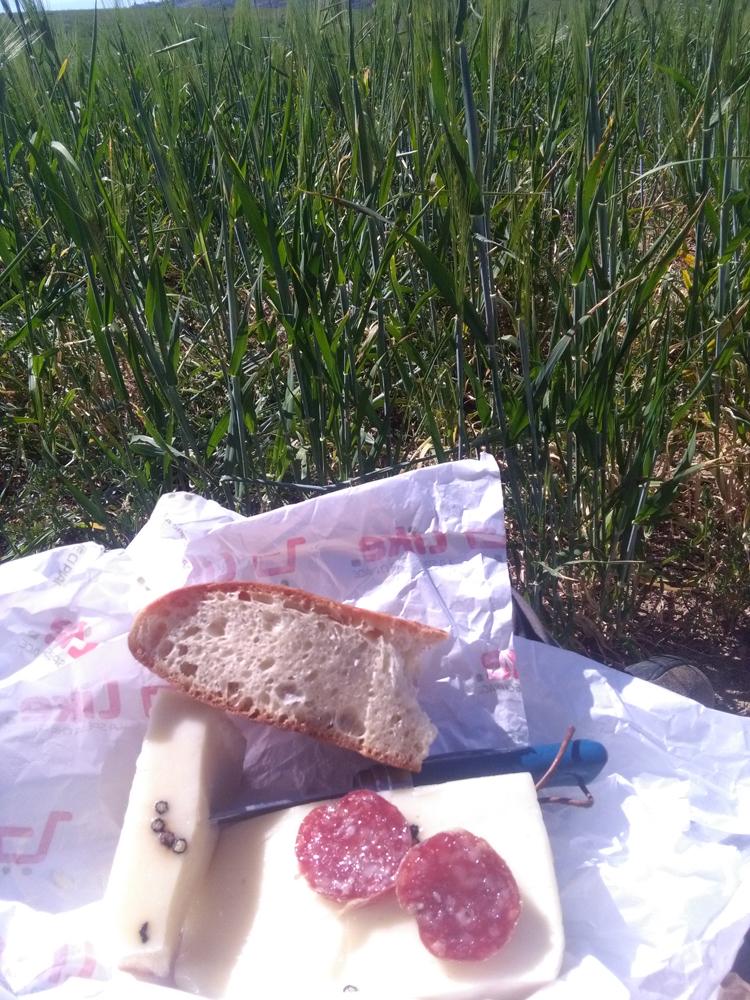 Un veloce pasto (foto Di Trapani)
