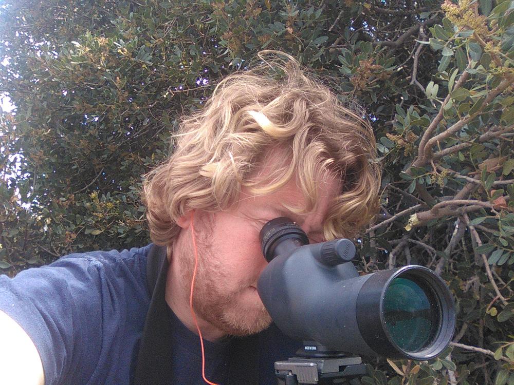 L'osservazione del nido (foto Di Trapani)