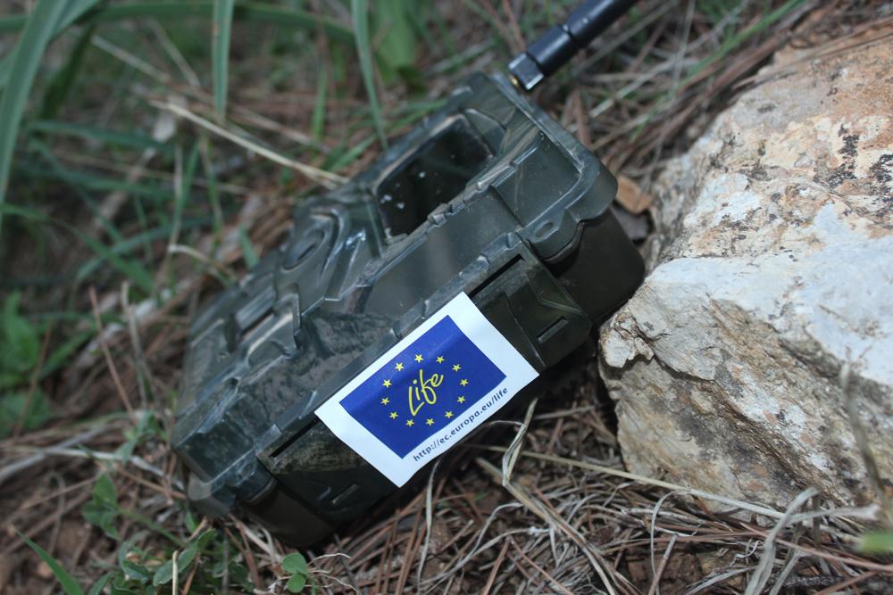La fototrappola pronta per essere installata (foto Di Trapani)