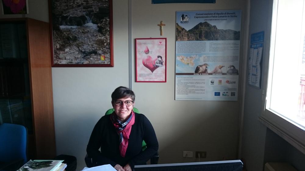 Il pannello installato presso il Dipartimento per lo Sviluppo Rurale e Territoriale della Regione Sicilia (foto Catullo)