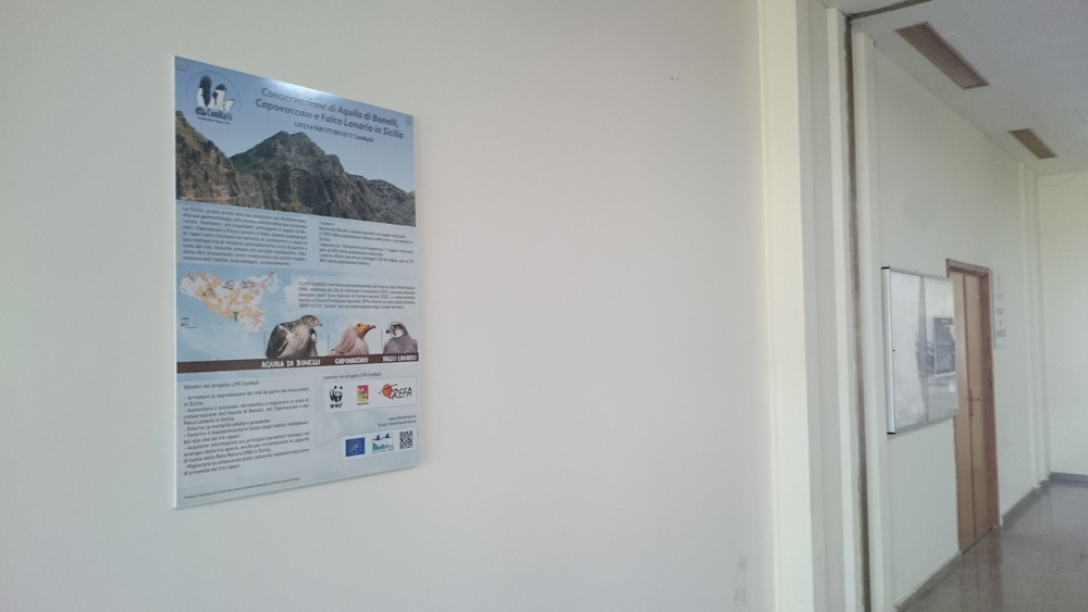 Il pannello installato presso la sede del Dipartimento Regionale per l'Ambiente (foto Catullo)