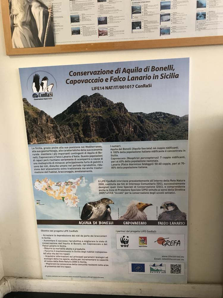 Il pannello installato presso il WWF Italia (foto Pollutri)
