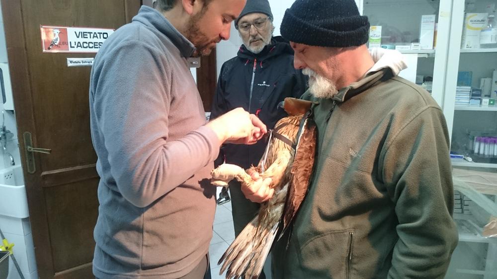 Pascual Lopez Lopez fissa il trasmettitore (foto Catullo)