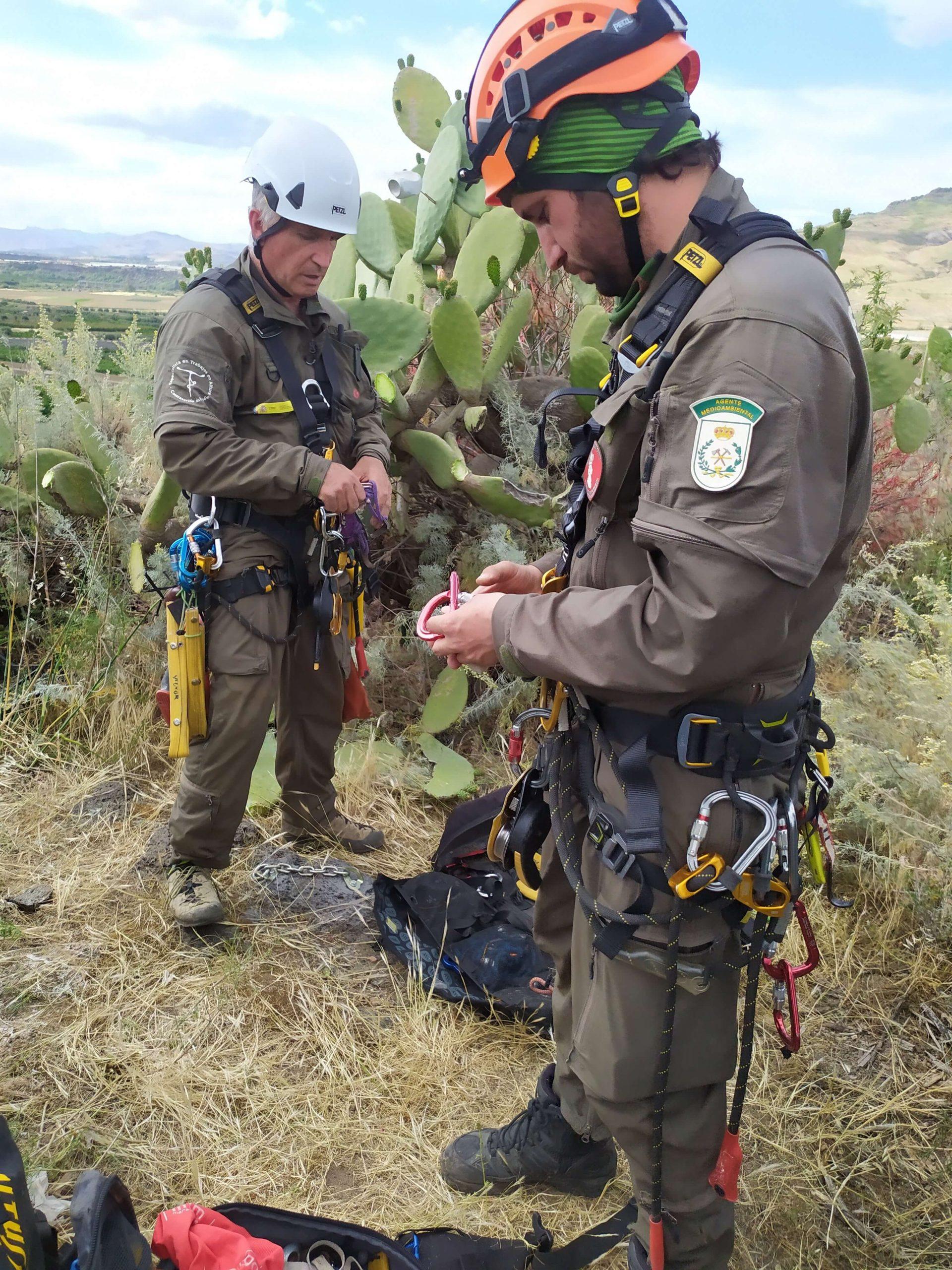 GREFA staff members during preparatory operations - Pollutri