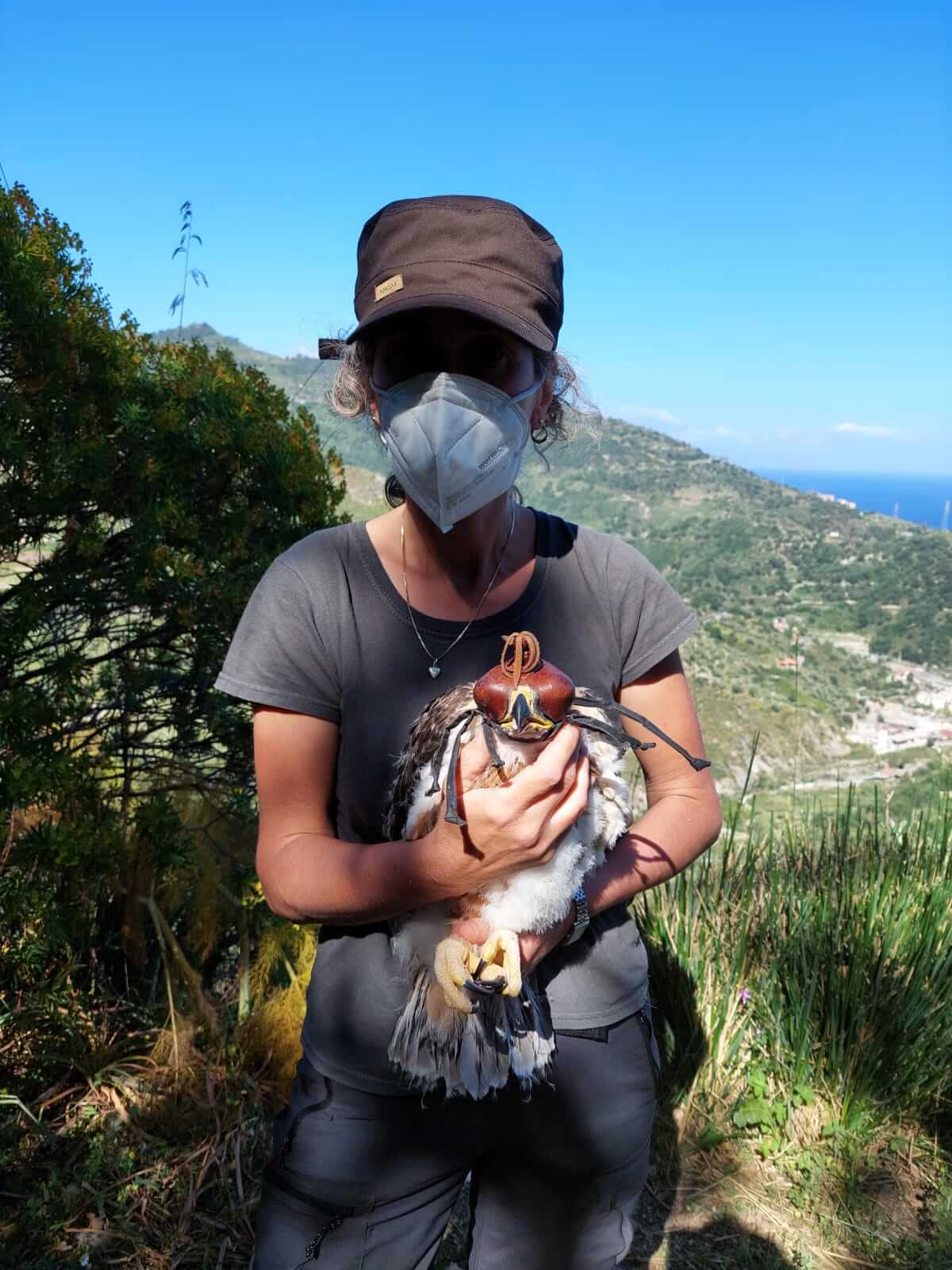 Staff member holds a young eagle 2