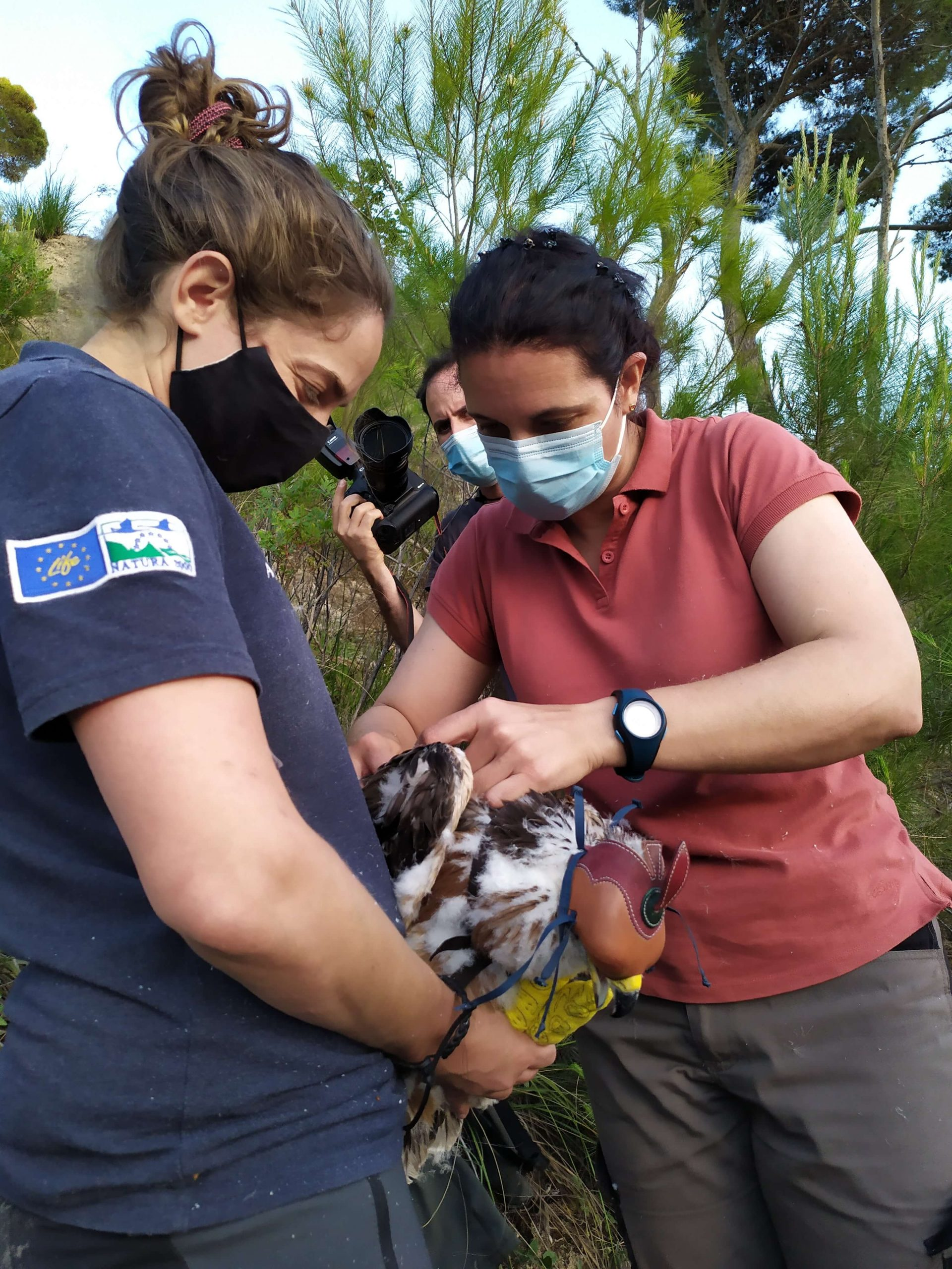 Equipe del progetto LIFE durante l'attività di marcatura (foto Pollutri)