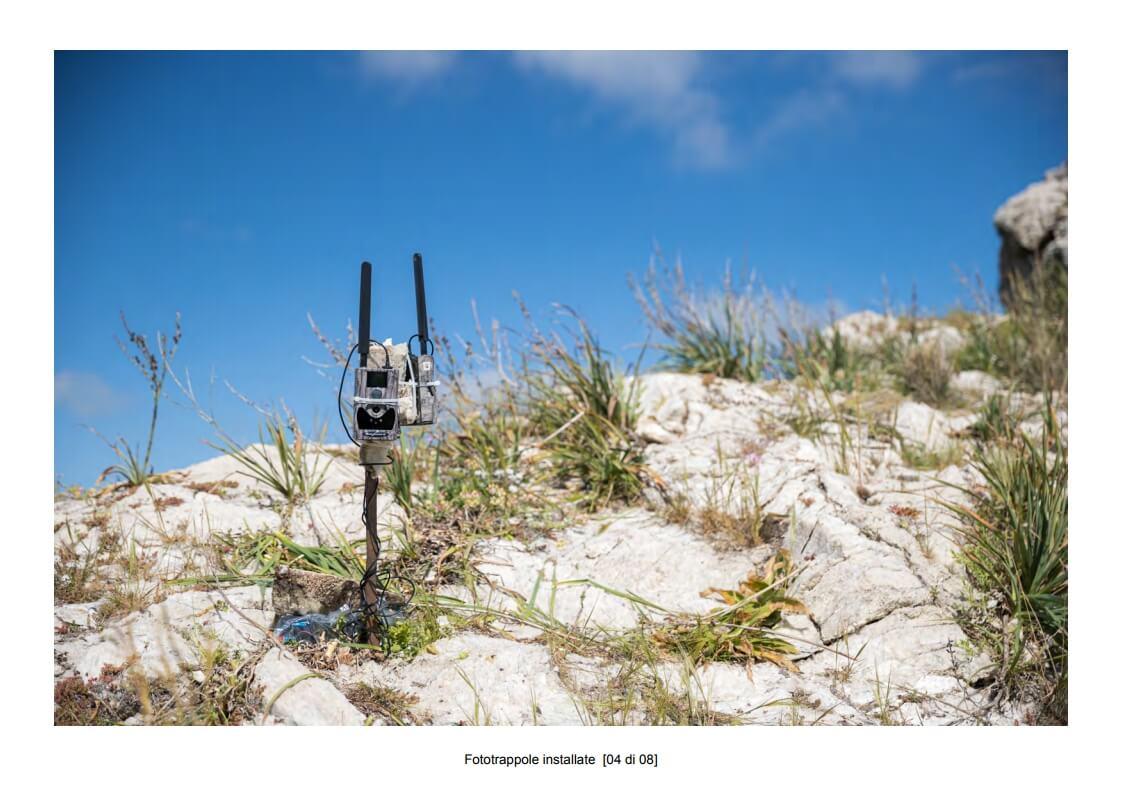Camera traps installed - 04 of 08 (photo: Mathia Coco)