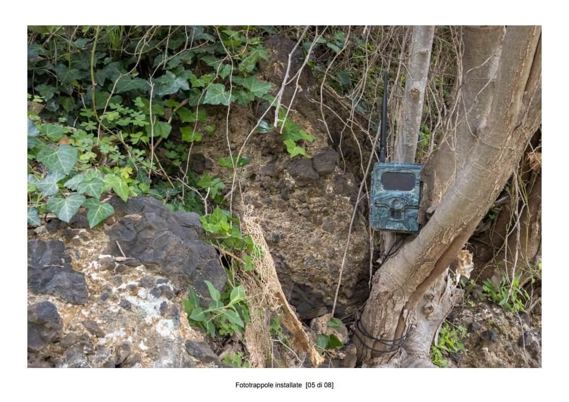 Camera traps installed - 05 of 08 (photo: Mathia Coco)