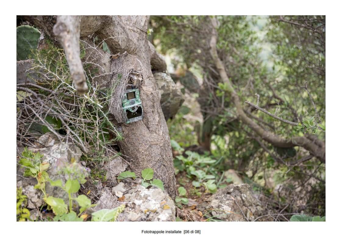 Camera traps installed - 06 of 08 (photo: Mathia Coco)