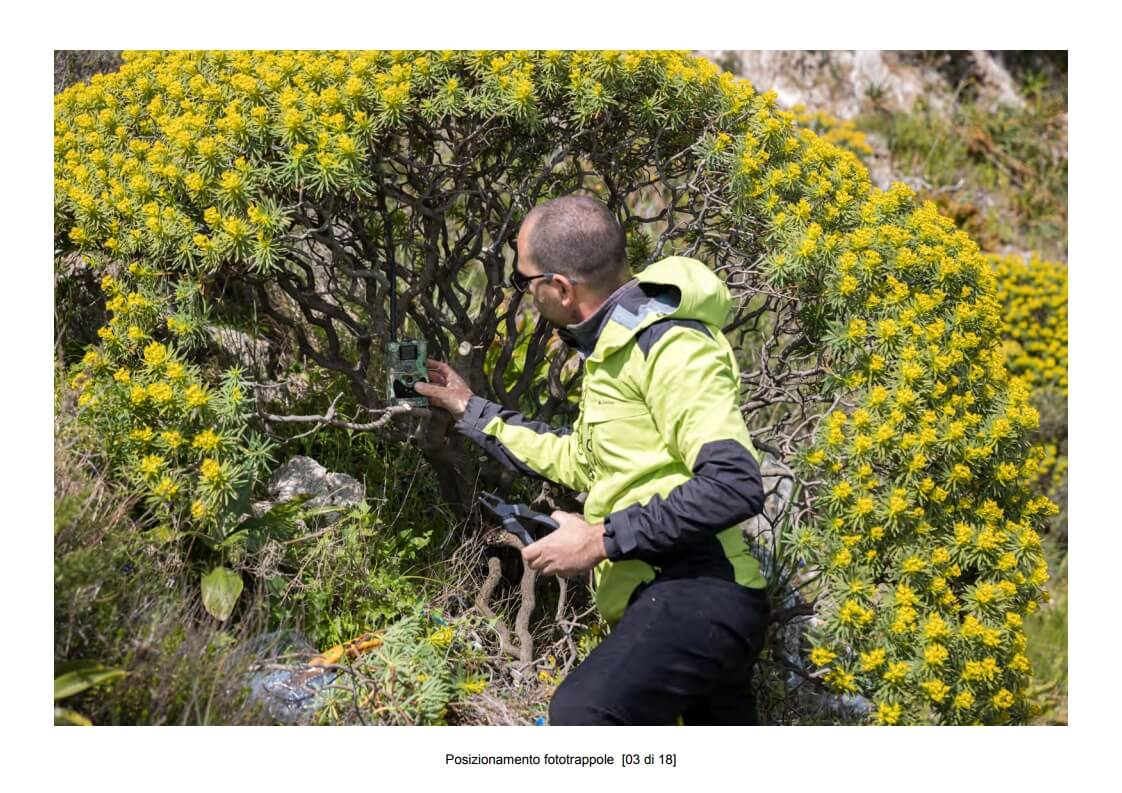 Positioning of camera traps - 03 of 18 (photo: Mathia Coco)