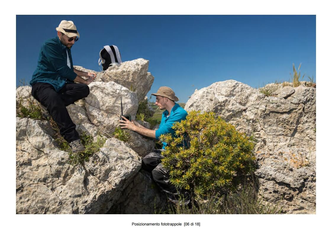 Positioning of camera traps - 06 of 18 (photo: Mathia Coco)
