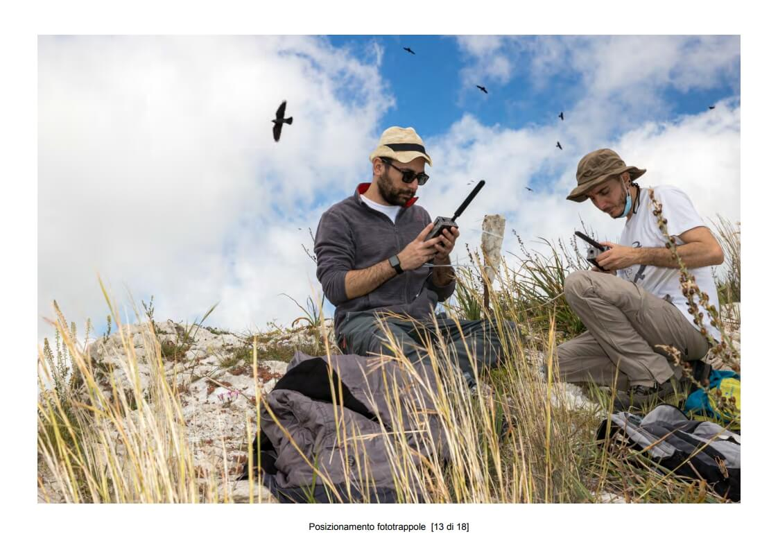 Positioning of camera traps - 13 of 18 (photo: Mathia Coco)